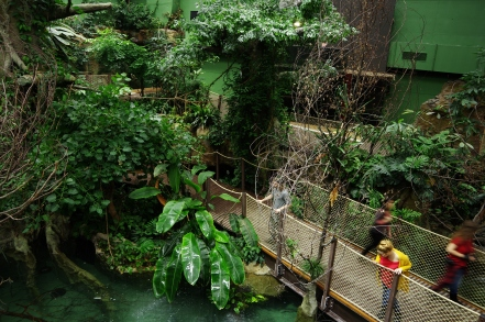 AQUATIS_Amazonia_Tropical Greenhouse1 ©Tristan Pasche
